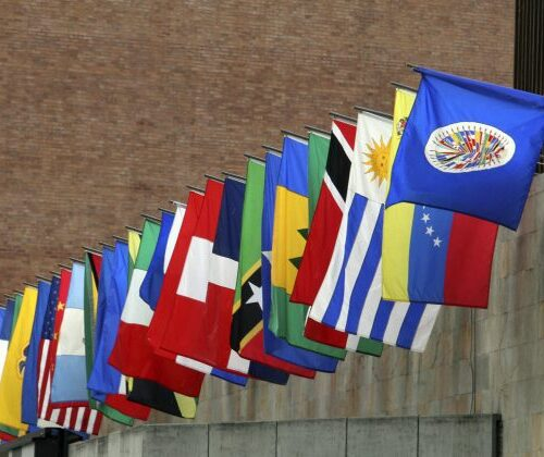 OEA: No hay evidencia de ninguna irregularidad grave en las elecciones de EEUU