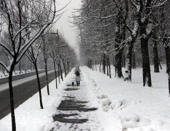 Gran helada golpea toda Europa con temperaturas hasta -27 grados Celsius