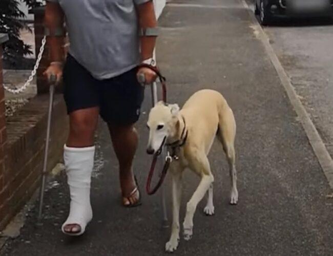 Gastó 400 dólares en el veterinario, pero descubrió que su perro solo lo imitaba