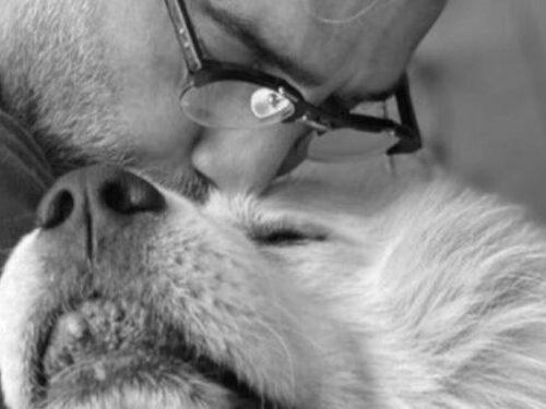 """La emotiva despedida de Alejandro Fernández a su perro """"Coco"""""""