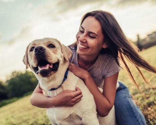 Reino Unido reconocerá por ley que los animales tienen sentimientos