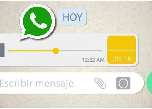 WhatsApp elimina una función esencial para todos los usuarios