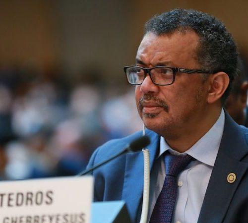 OMS denunció el fracaso del mundo ante la escasez de vacunas anticovid para países pobres