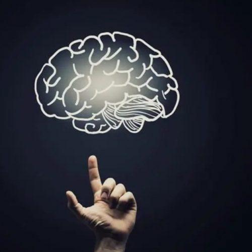 Día Mundial del Cerebro: La ocasión perfecta para aprender a cuidar de él