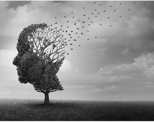 Conozca qué es la amnesia generacional y como afecta a los ciudadanos