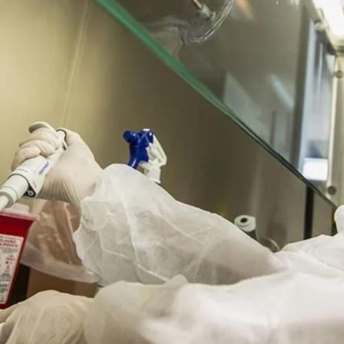 Médicos Unidos alerta sobre la circulación de cinco variantes del coronavirus en Venezuela